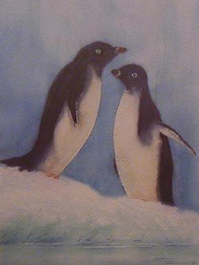 Adélie Penguins, from the Antarctica Collection